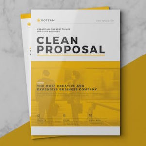 Clean Proposal by RoyalBlackStudio